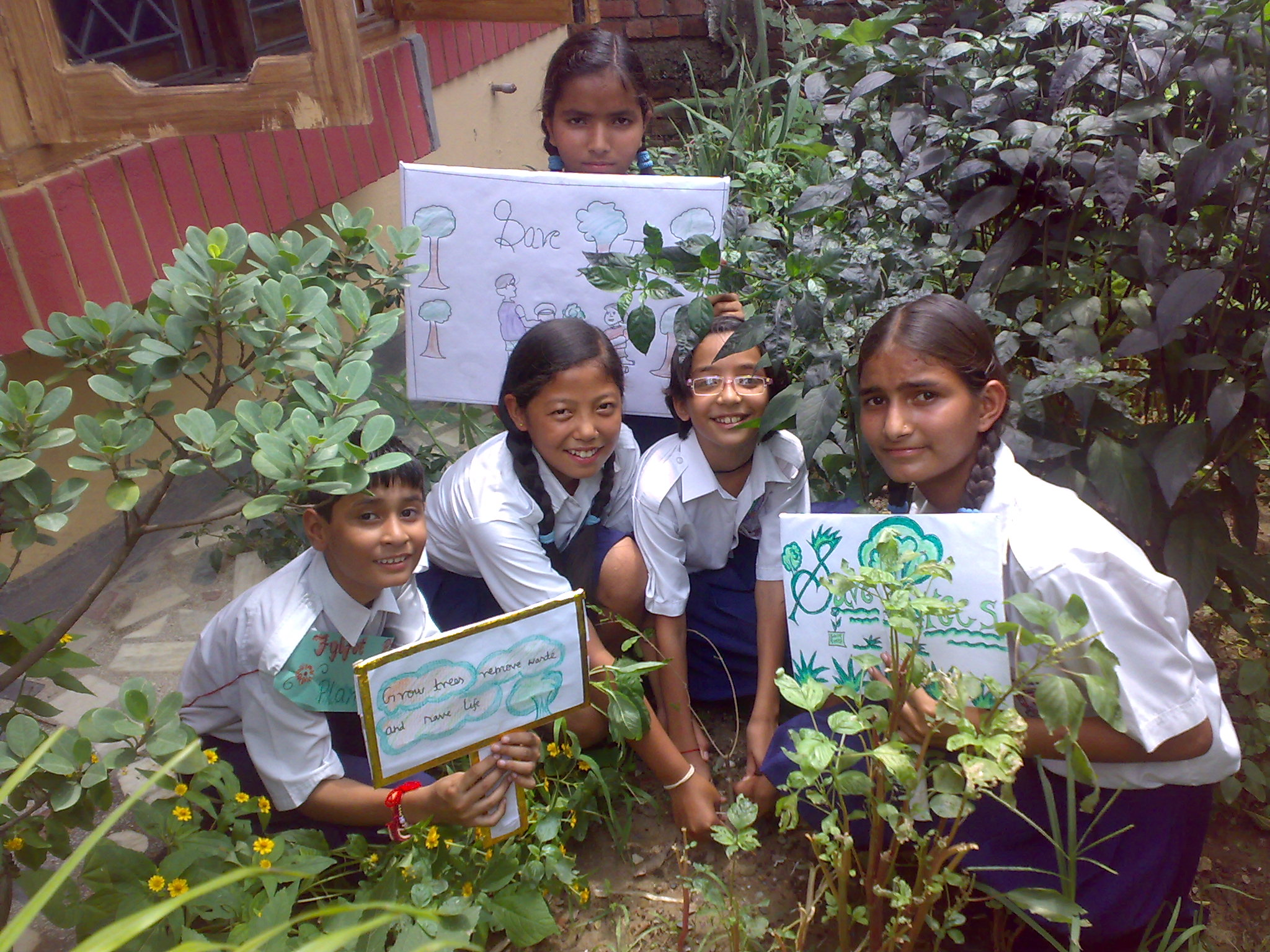 Trees for Doon Happy recipients of free saplings